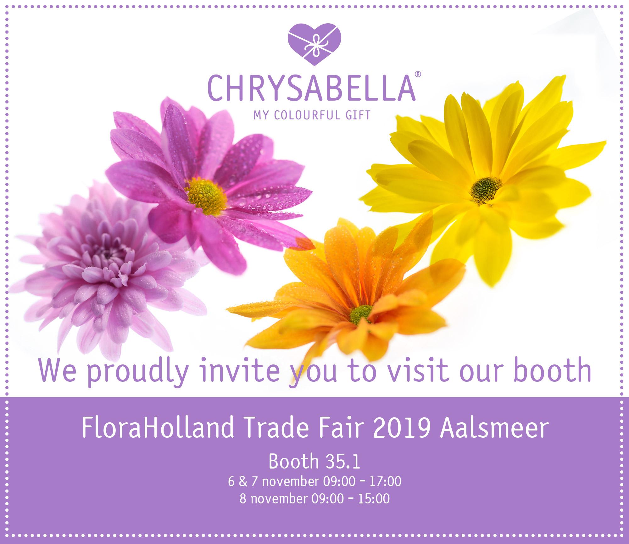 berkhout chrysabella FloraHolland Trade Fair 2019