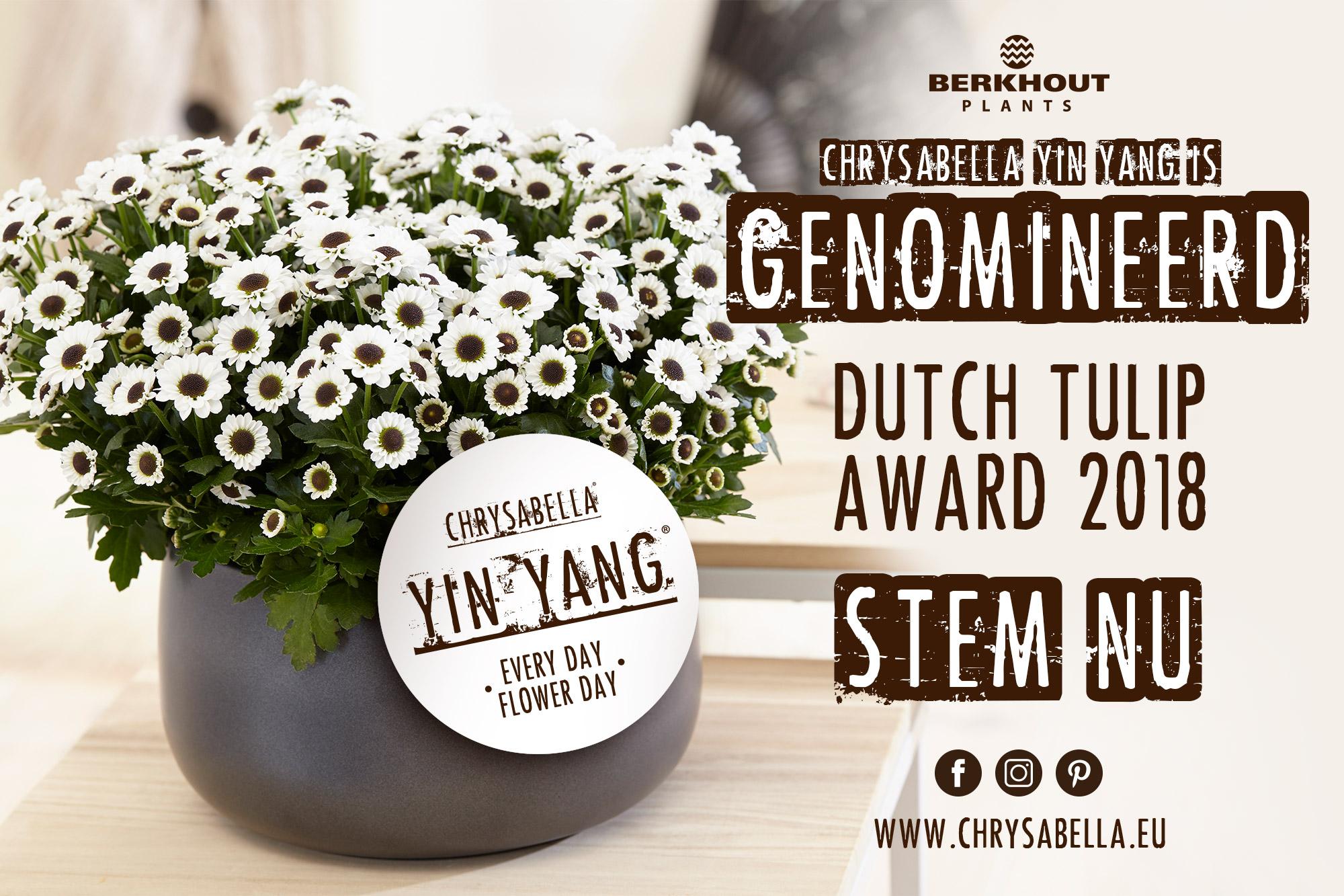 berkhout chrysabella yin yang genomineerd